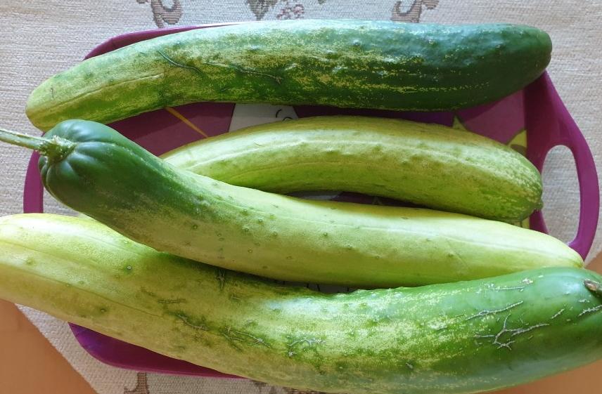 file:cucumber